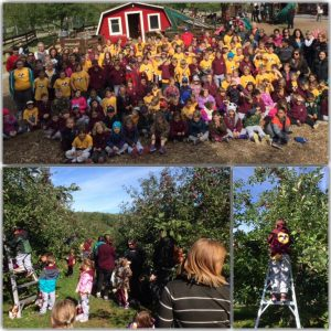 gault_apple_picking
